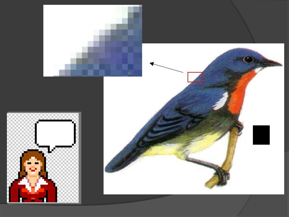 Mesin cetak gambar berwarna dapat menghasilkan cetakan yang memiliki lebih dari 4.000 titik per inci (ppi)