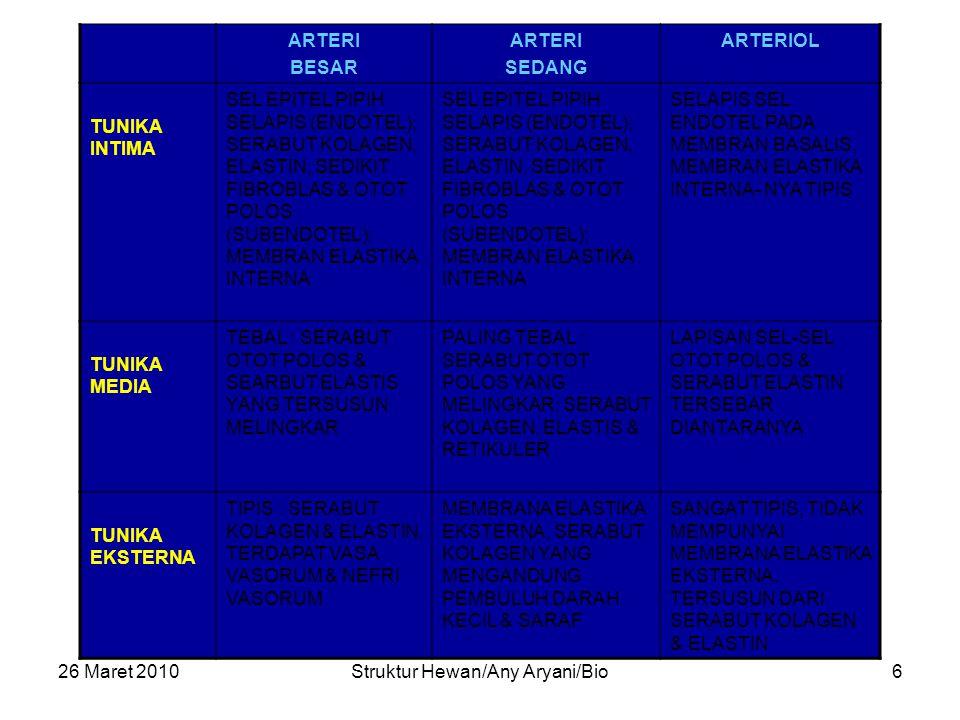 26 Maret 2010Struktur Hewan/Any Aryani/Bio6 ARTERI BESAR ARTERI SEDANG ARTERIOL TUNIKA INTIMA SEL EPITEL PIPIH SELAPIS (ENDOTEL); SERABUT KOLAGEN, ELASTIN, SEDIKIT FIBROBLAS & OTOT POLOS (SUBENDOTEL); MEMBRAN ELASTIKA INTERNA SELAPIS SEL ENDOTEL PADA MEMBRAN BASALIS, MEMBRAN ELASTIKA INTERNA- NYA TIPIS TUNIKA MEDIA TEBAL : SERABUT OTOT POLOS & SEARBUT ELASTIS YANG TERSUSUN MELINGKAR PALING TEBAL : SERABUT OTOT POLOS YANG MELINGKAR; SERABUT KOLAGEN, ELASTIS & RETIKULER LAPISAN SEL-SEL OTOT POLOS & SERABUT ELASTIN TERSEBAR DIANTARANYA TUNIKA EKSTERNA TIPIS : SERABUT KOLAGEN & ELASTIN, TERDAPAT VASA VASORUM & NEFRI VASORUM MEMBRANA ELASTIKA EKSTERNA, SERABUT KOLAGEN YANG MENGANDUNG PEMBULUH DARAH KECIL & SARAF SANGAT TIPIS, TIDAK MEMPUNYAI MEMBRANA ELASTIKA EKSTERNA, TERSUSUN DARI SERABUT KOLAGEN & ELASTIN