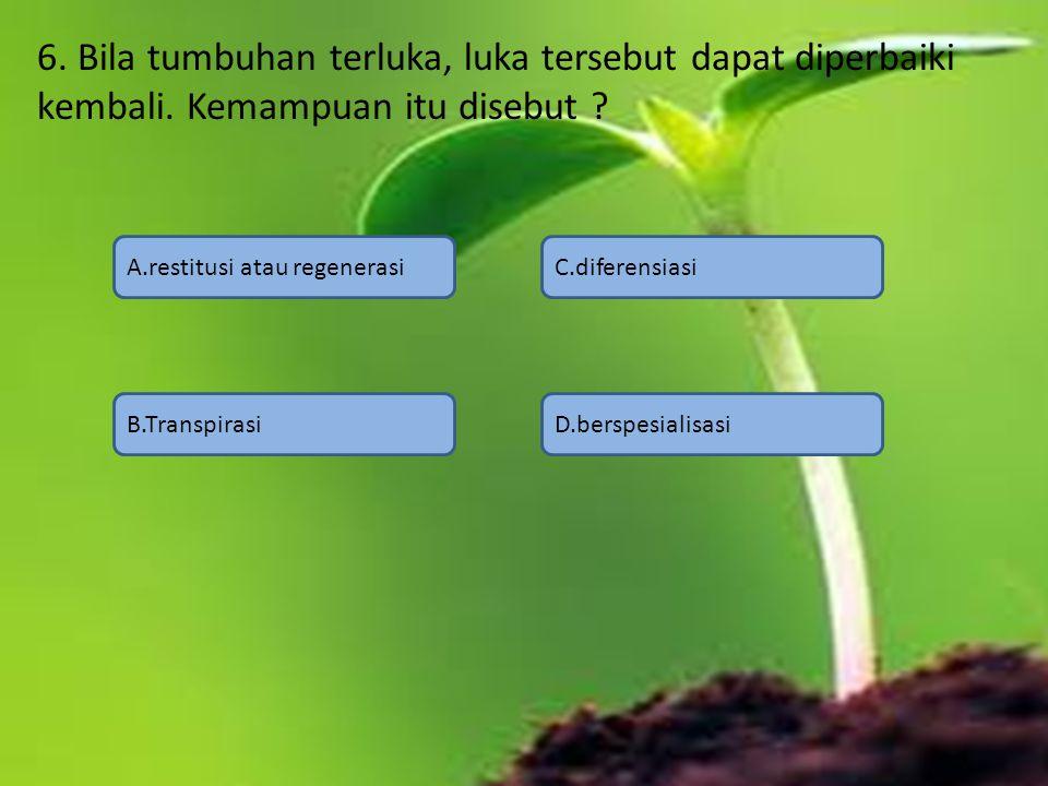 6. Bila tumbuhan terluka, luka tersebut dapat diperbaiki kembali. Kemampuan itu disebut ? A.restitusi atau regenerasi B.Transpirasi C.diferensiasi D.b