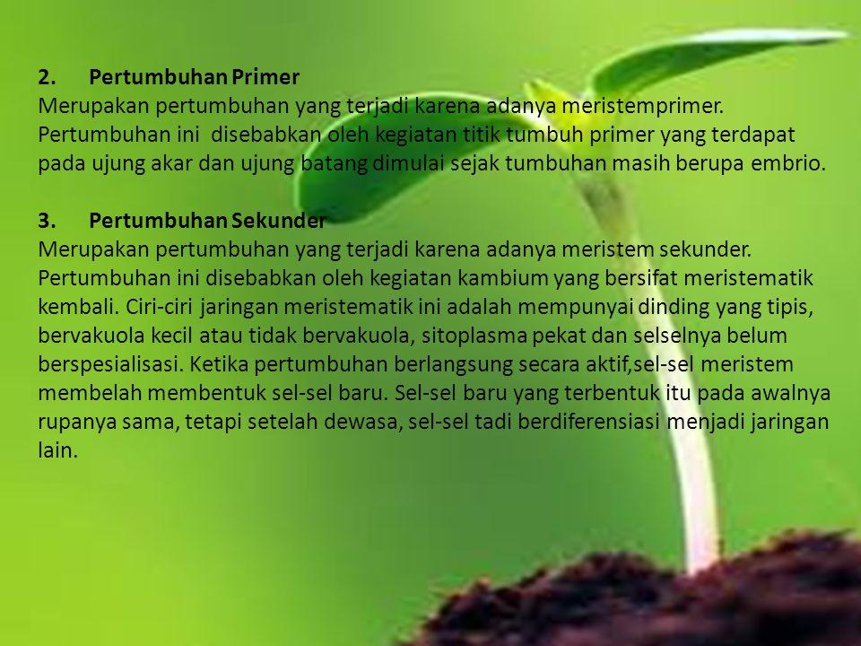 2.fungsi hormone auksin dalam pertumbuhan dan perkembangan tanaman yaitu.