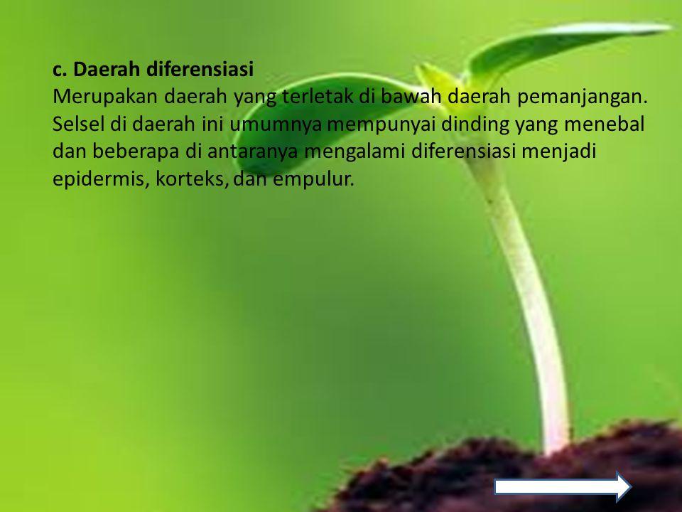 C.Faktor-faktor pertumbuhan dan perkembangan tumbuhan 1.