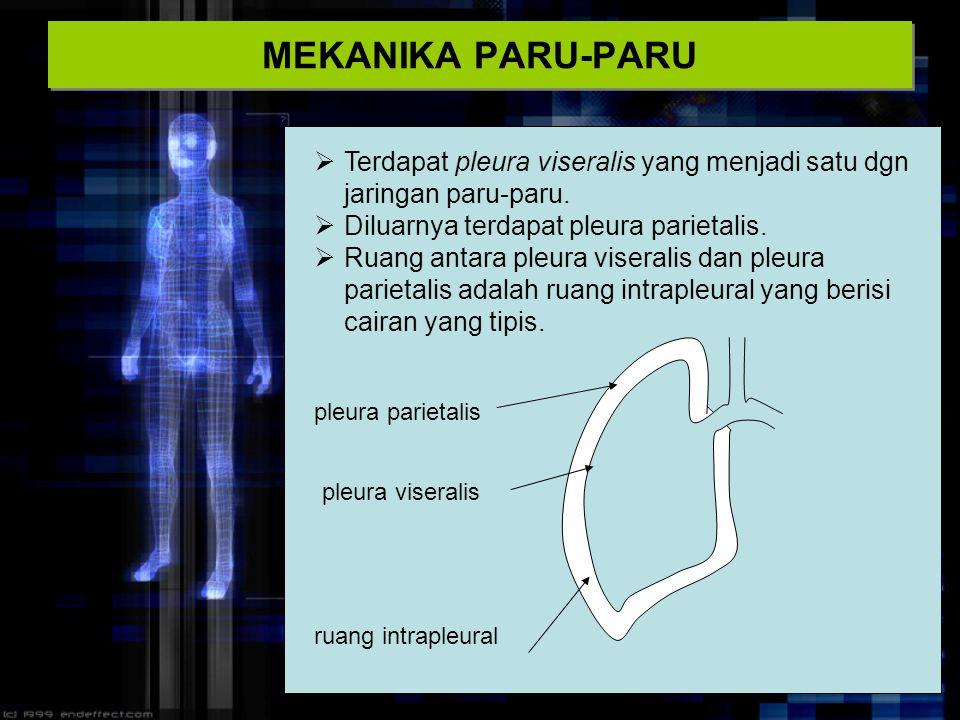 MEKANIKA PARU-PARU  Terdapat pleura viseralis yang menjadi satu dgn jaringan paru-paru.  Diluarnya terdapat pleura parietalis.  Ruang antara pleura