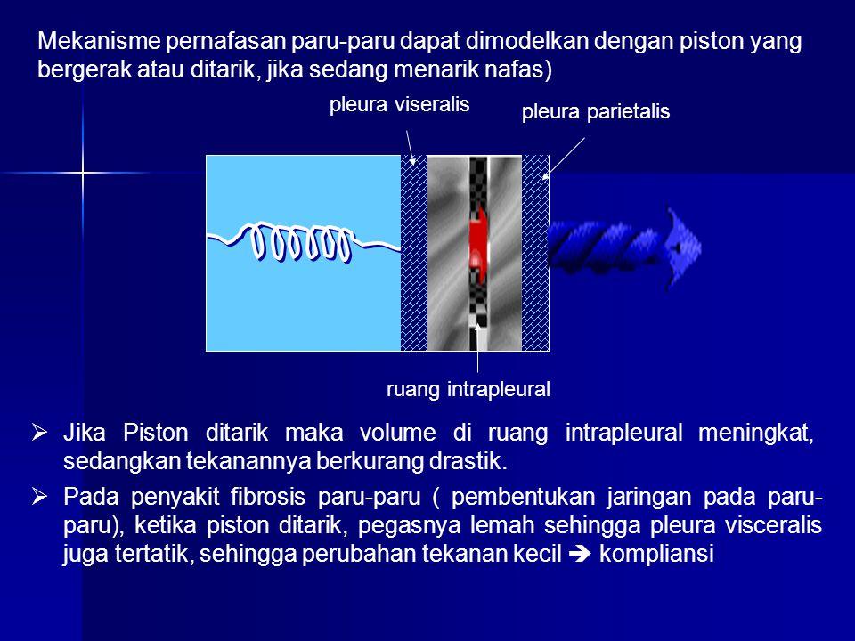 pleura viseralis pleura parietalis ruang intrapleural  Jika Piston ditarik maka volume di ruang intrapleural meningkat, sedangkan tekanannya berkuran