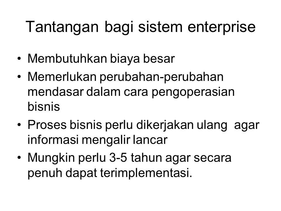 Tantangan bagi sistem enterprise Membutuhkan biaya besar Memerlukan perubahan-perubahan mendasar dalam cara pengoperasian bisnis Proses bisnis perlu dikerjakan ulang agar informasi mengalir lancar Mungkin perlu 3-5 tahun agar secara penuh dapat terimplementasi.