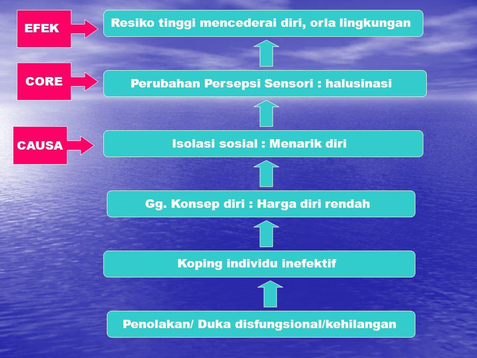 Perubahan Persepsi Sensori : halusinasi Isolasi sosial : Menarik diri Gg. Konsep diri : Harga diri rendah Koping individu inefektif Penolakan/ Duka di