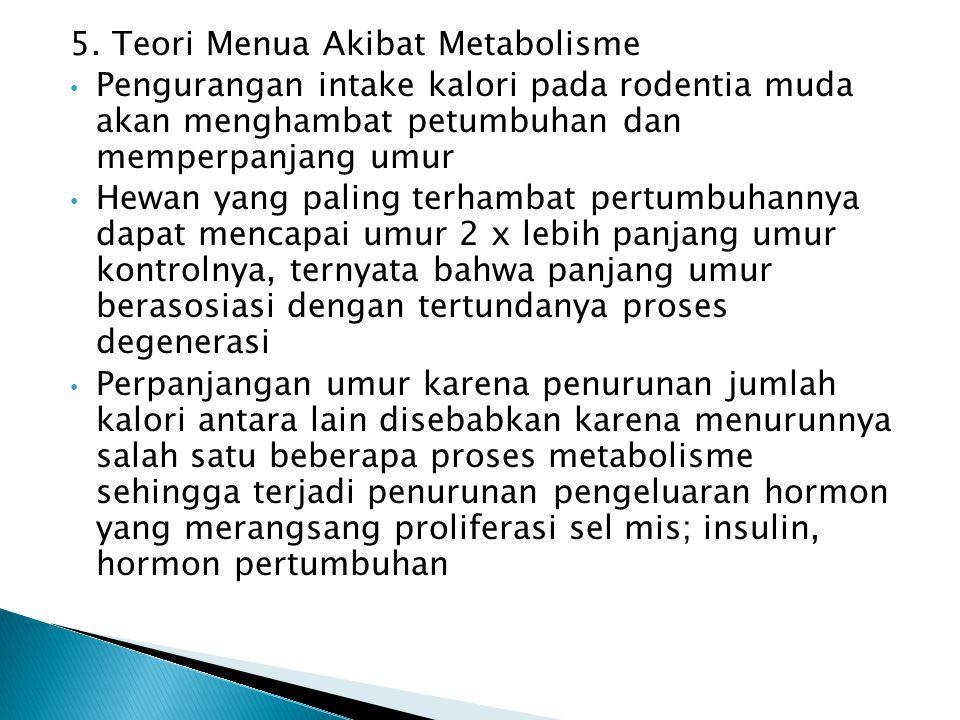 5. Teori Menua Akibat Metabolisme Pengurangan intake kalori pada rodentia muda akan menghambat petumbuhan dan memperpanjang umur Hewan yang paling ter