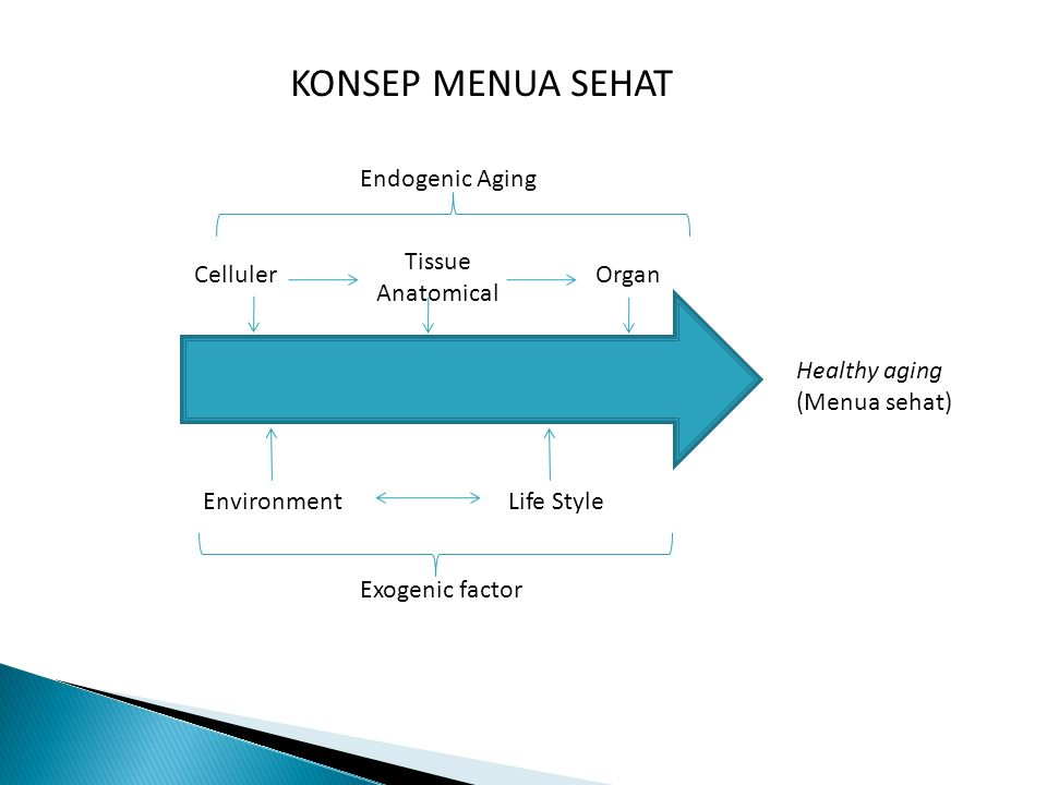 Celluler Tissue Anatomical Organ EnvironmentLife Style Healthy aging (Menua sehat) KONSEP MENUA SEHAT Exogenic factor Endogenic Aging