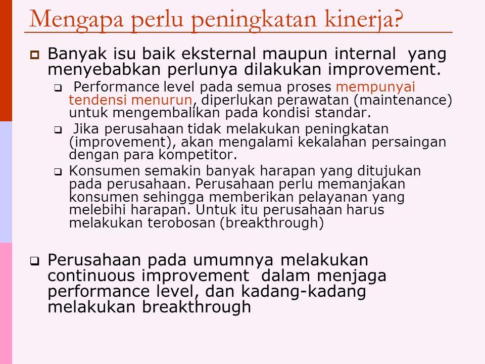 Mengapa perlu peningkatan kinerja?  Banyak isu baik eksternal maupun internal yang menyebabkan perlunya dilakukan improvement.  Performance level pa