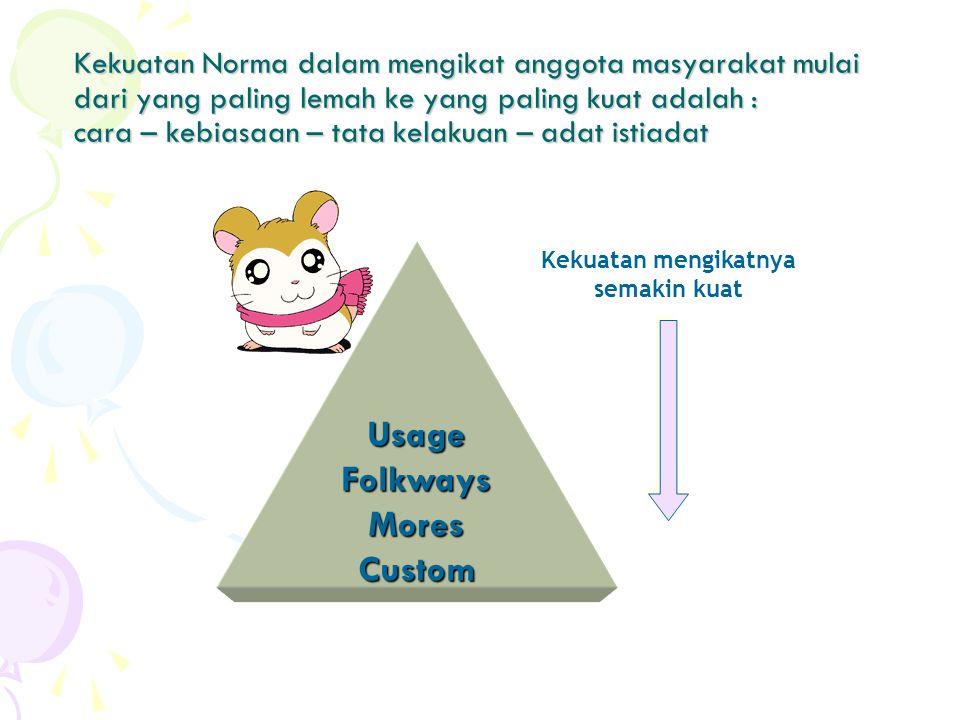 Ibrahim (2002), menyatakan bahwa sistim norma merupakan sejumlah norma yang terrangkai dan berkaitan satu sama lain Norma norma ini mempunyai kekuatan