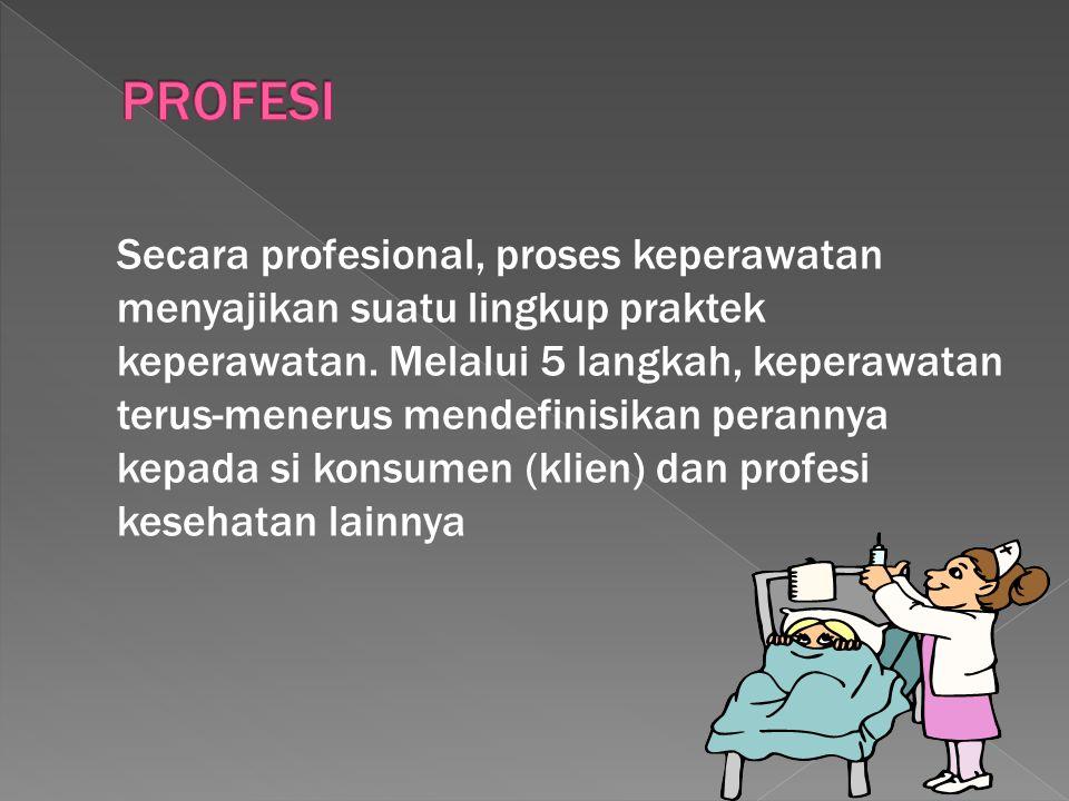 Secara profesional, proses keperawatan menyajikan suatu lingkup praktek keperawatan. Melalui 5 langkah, keperawatan terus-menerus mendefinisikan peran