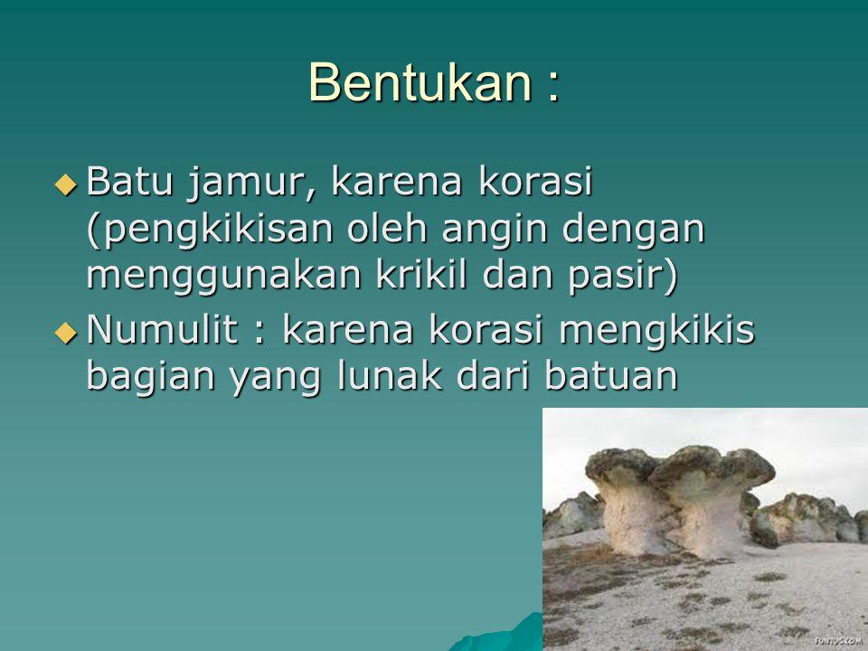 Bentukan :  Batu jamur, karena korasi (pengkikisan oleh angin dengan menggunakan krikil dan pasir)  Numulit : karena korasi mengkikis bagian yang lu