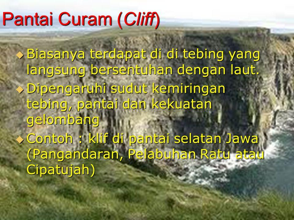 Pantai Curam (Cliff)  Biasanya terdapat di di tebing yang langsung bersentuhan dengan laut.  Dipengaruhi sudut kemiringan tebing, pantai dan kekuata