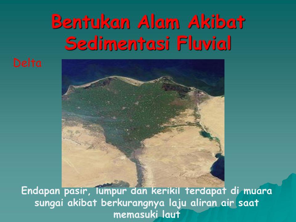 Bentukan Alam Akibat Sedimentasi Fluvial Delta Endapan pasir, lumpur dan kerikil terdapat di muara sungai akibat berkurangnya laju aliran air saat mem