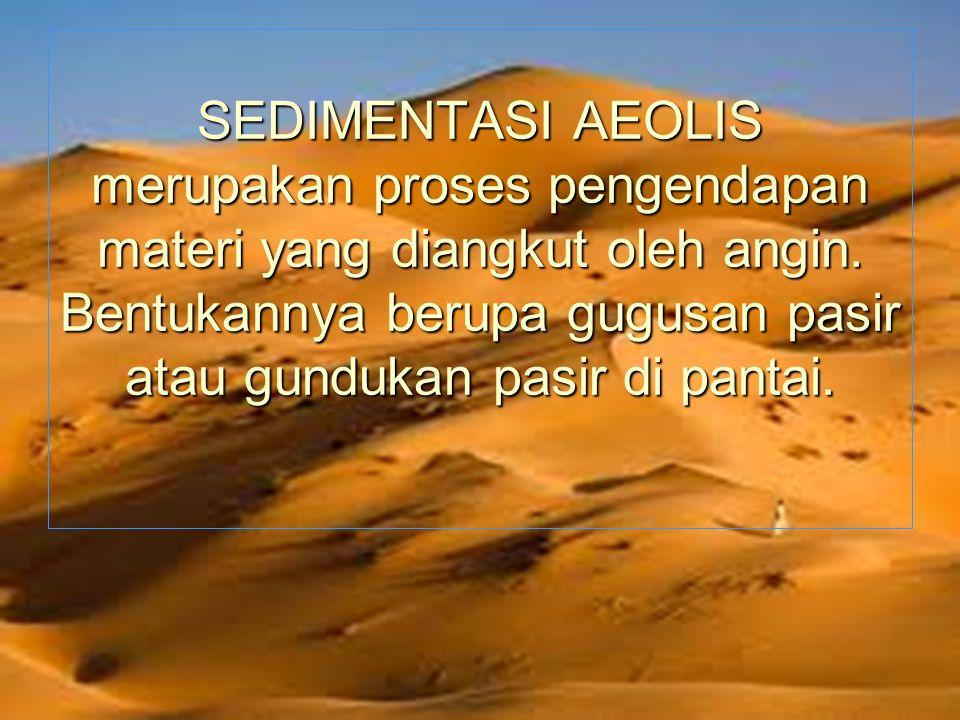 SEDIMENTASI AEOLIS merupakan proses pengendapan materi yang diangkut oleh angin. Bentukannya berupa gugusan pasir atau gundukan pasir di pantai.