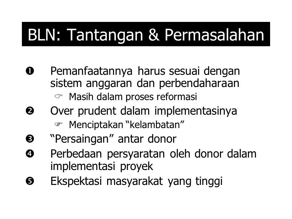 BLN: Tantangan & Permasalahan  Pemanfaatannya harus sesuai dengan sistem anggaran dan perbendaharaan  Masih dalam proses reformasi  Over prudent dalam implementasinya  Menciptakan kelambatan  Persaingan antar donor  Perbedaan persyaratan oleh donor dalam implementasi proyek  Ekspektasi masyarakat yang tinggi