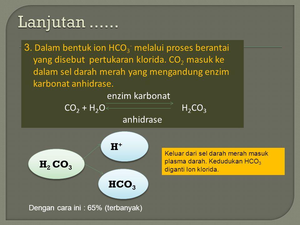 3.Dalam bentuk ion HCO 3 - melalui proses berantai yang disebut pertukaran klorida.