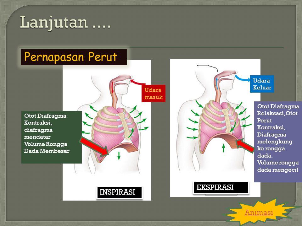 KELAINAN SISTEM PERNAPASAN Chronic Obstructive Pulmonary Disease (COPD) Bronkitis Emfisema Pneumonia Rhinitis Kanker Paru-paru
