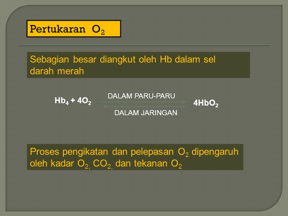 Pertukaran O 2 Sebagian besar diangkut oleh Hb dalam sel darah merah Hb 4 + 4O 2 DALAM PARU-PARU DALAM JARINGAN 4HbO 2 Proses pengikatan dan pelepasan O 2 dipengaruh oleh kadar O 2, CO 2, dan tekanan O 2