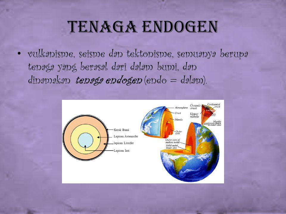 Tenaga Endogen vulkanisme, seisme dan tektonisme, semuanya berupa tenaga yang berasal dari dalam bumi, dan dinamakan tenaga endogen (endo = dalam).