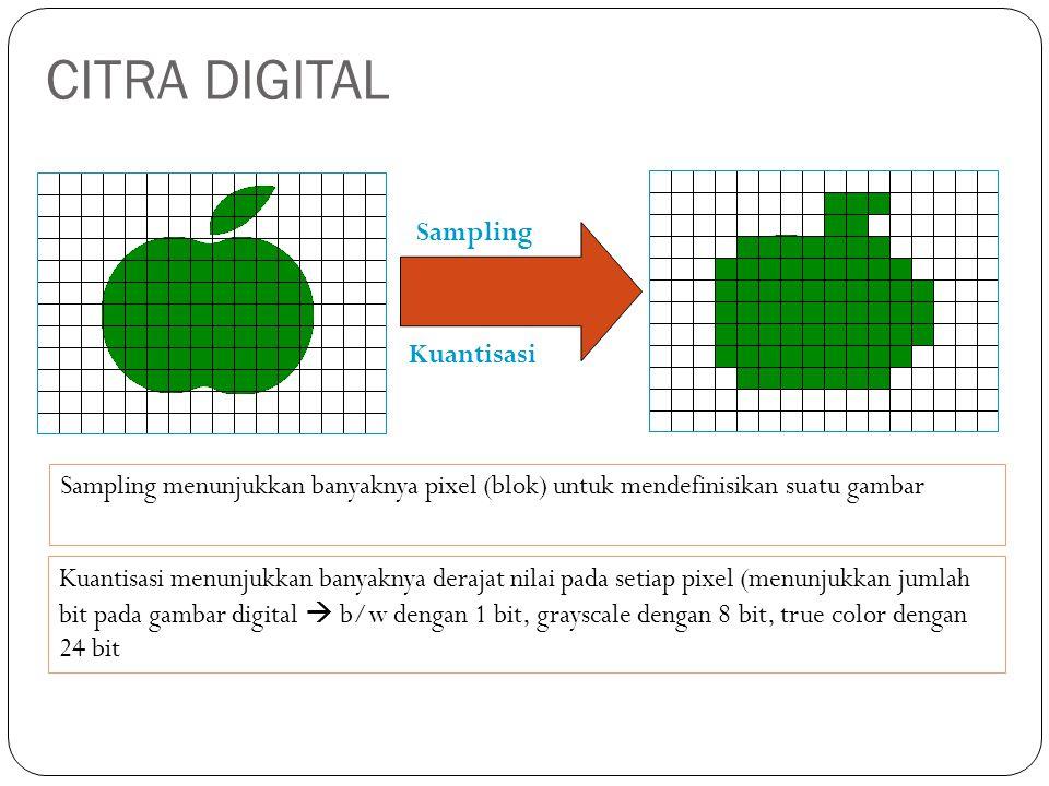 Sampling Kuantisasi Sampling menunjukkan banyaknya pixel (blok) untuk mendefinisikan suatu gambar Kuantisasi menunjukkan banyaknya derajat nilai pada