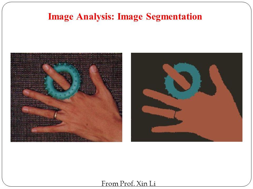 Image Analysis: Image Segmentation From Prof. Xin Li