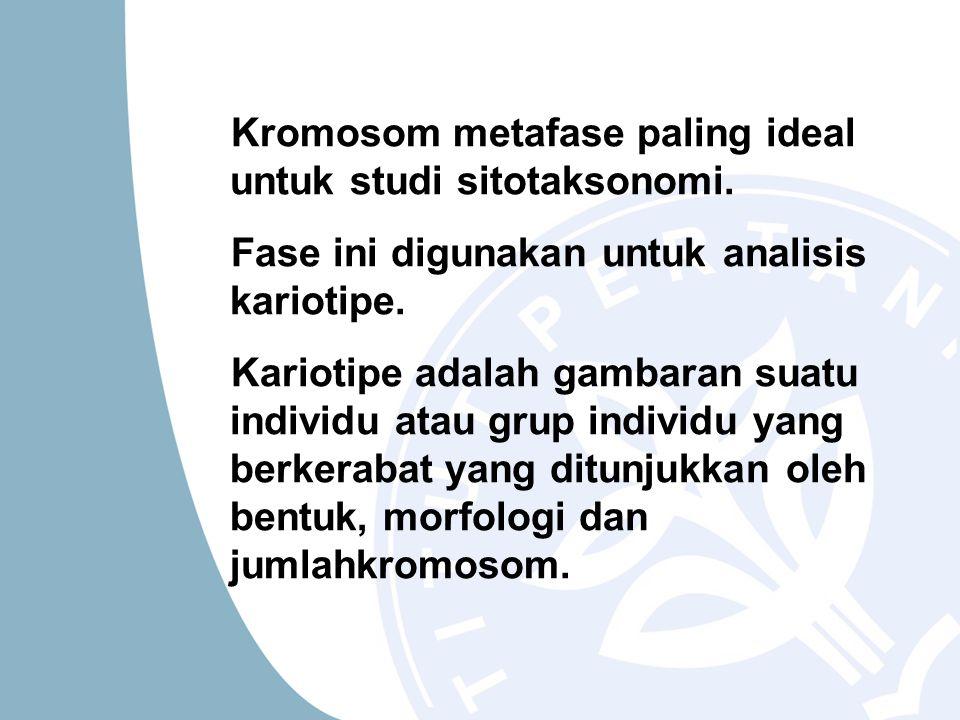 Kromosom metafase paling ideal untuk studi sitotaksonomi. Fase ini digunakan untuk analisis kariotipe. Kariotipe adalah gambaran suatu individu atau g