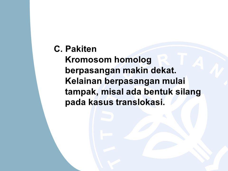 C.Pakiten Kromosom homolog berpasangan makin dekat.