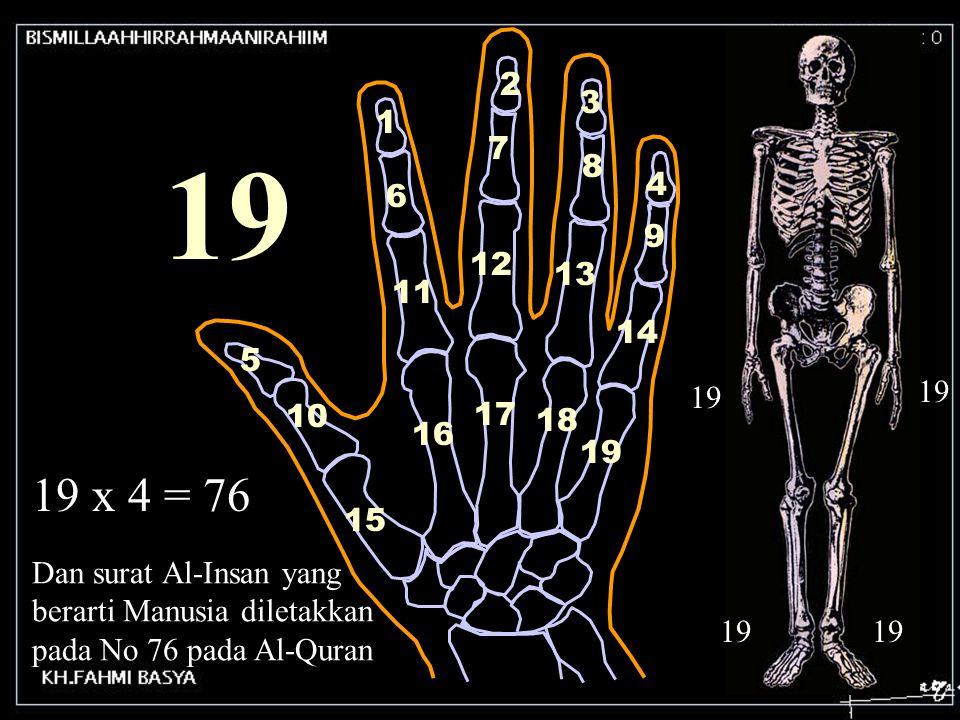 1 2 3 4 5 6 7 8 9 10 11 12 13 14 15 16 17 18 19 19 x 4 = 76 Dan surat Al-Insan yang berarti Manusia diletakkan pada No 76 pada Al-Quran