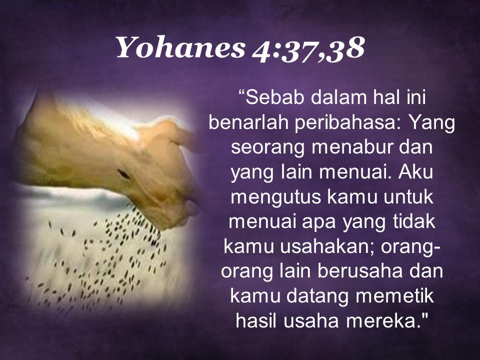 """Yohanes 4:37,38 """"Sebab dalam hal ini benarlah peribahasa: Yang seorang menabur dan yang lain menuai. Aku mengutus kamu untuk menuai apa yang tidak kam"""