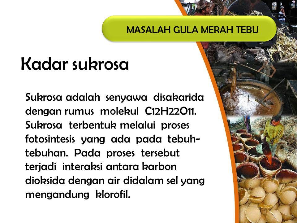 MASALAH GULA MERAH TEBU Kadar sukrosa Sukrosa adalah senyawa disakarida dengan rumus molekul C12H22O11. Sukrosa terbentuk melalui proses fotosintesis