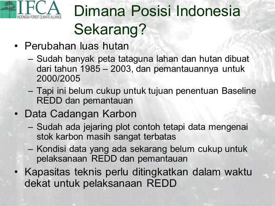 Dimana Posisi Indonesia Sekarang.
