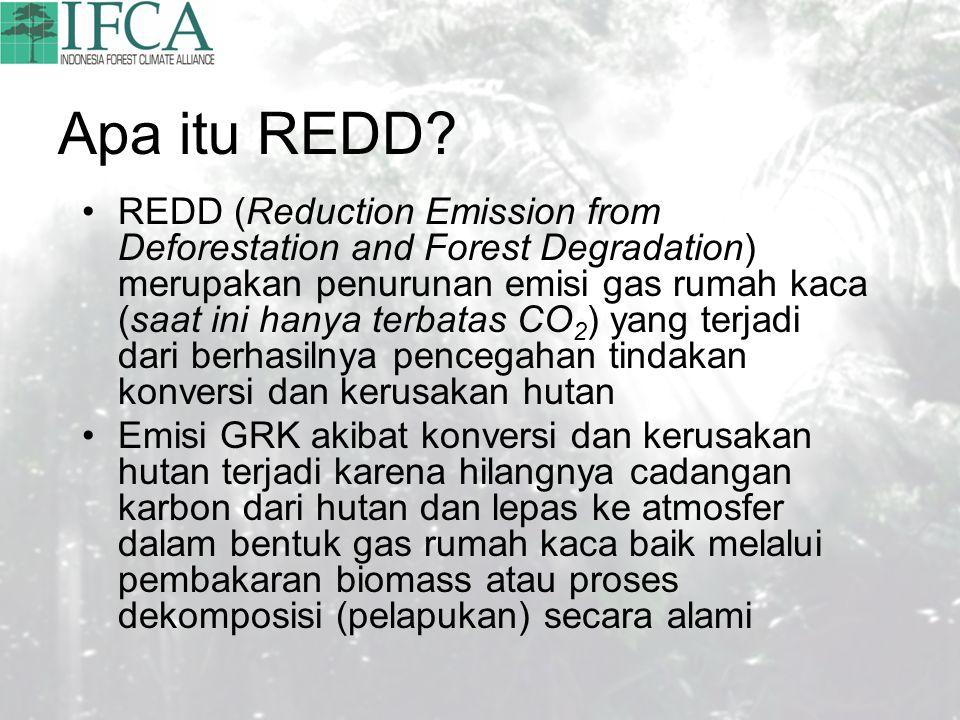 Apa itu REDD.