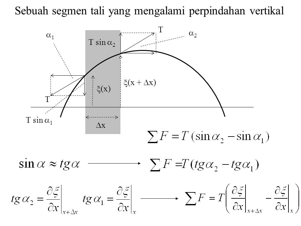 Sebuah segmen tali yang mengalami perpindahan vertikal T T sin  2  (x)  (x +  x) xx T sin  1  1 T 22