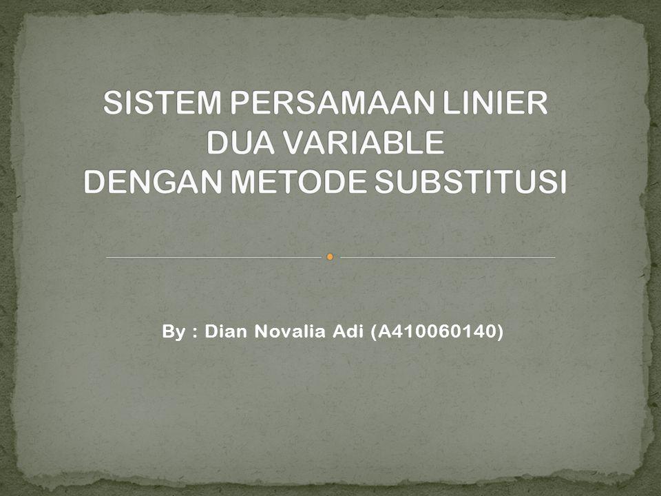 By : Dian Novalia Adi (A410060140)