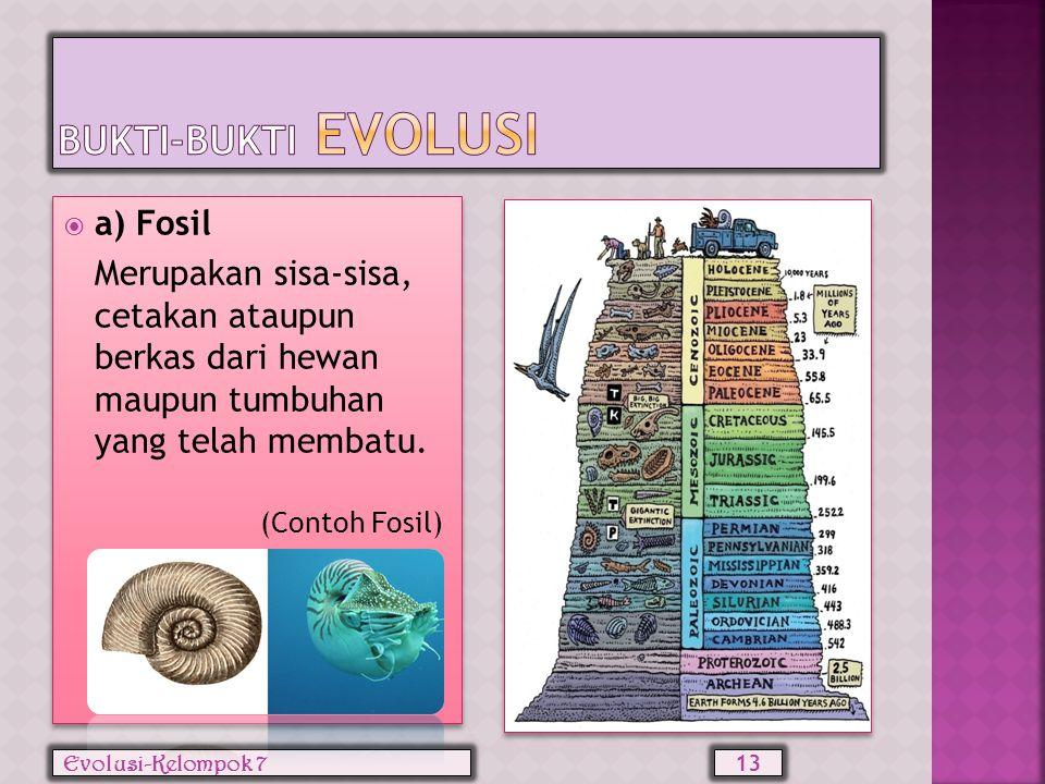  Erasmus Darwin Awalnya dalam populasi terdapat jerapah berleher panjang dan berleher pendek.Dalam kompetisi mendapatkan makanan jerapah berleher pan