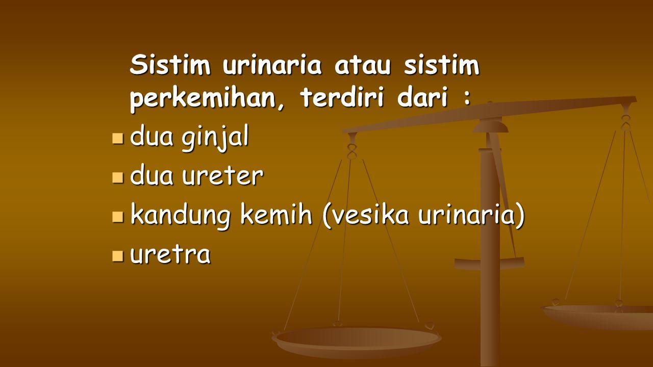 Sistim urinaria atau sistim perkemihan, terdiri dari : dua ginjal dua ginjal dua ureter dua ureter kandung kemih (vesika urinaria) kandung kemih (vesi