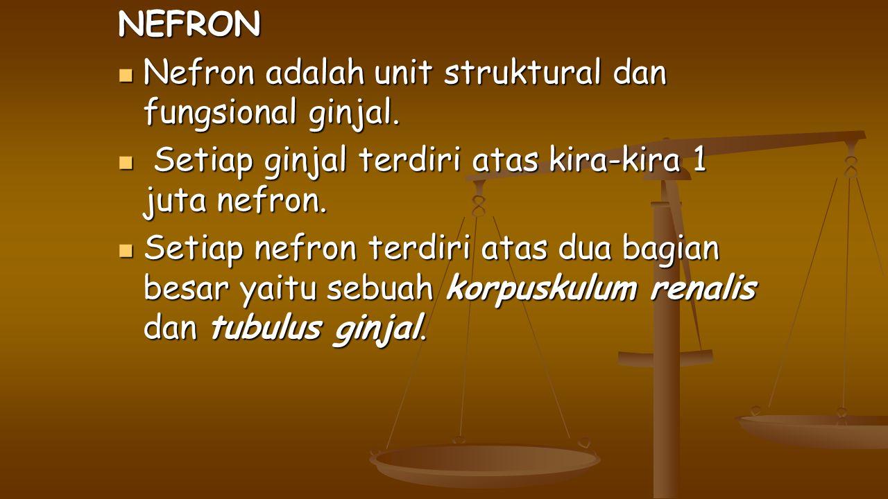 NEFRON Nefron adalah unit struktural dan fungsional ginjal. Nefron adalah unit struktural dan fungsional ginjal. Setiap ginjal terdiri atas kira-kira