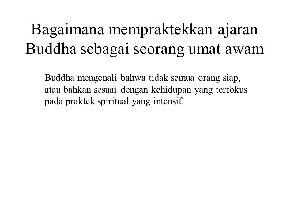 Bagaimana mempraktekkan ajaran Buddha sebagai seorang umat awam Buddha mengenali bahwa tidak semua orang siap, atau bahkan sesuai dengan kehidupan yan