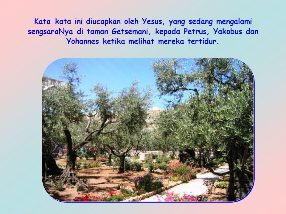 Kata-kata ini diucapkan oleh Yesus, yang sedang mengalami sengsaraNya di taman Getsemani, kepada Petrus, Yakobus dan Yohannes ketika melihat mereka tertidur.
