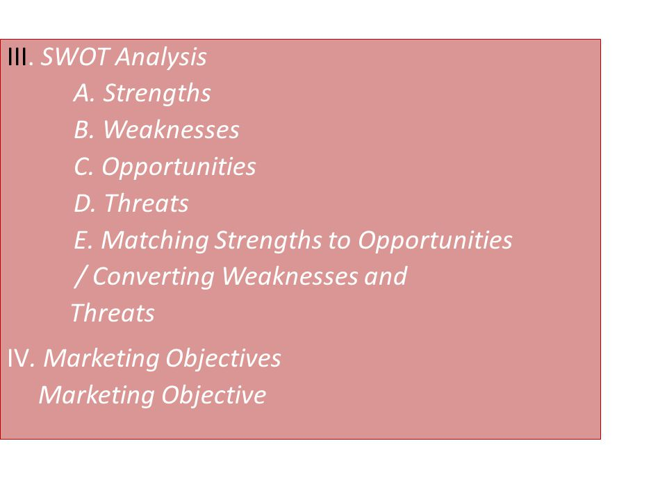 III. SWOT Analysis A. Strengths B. Weaknesses C. Opportunities D. Threats E. Matching Strengths to Opportunities / Converting Weaknesses and Threats I