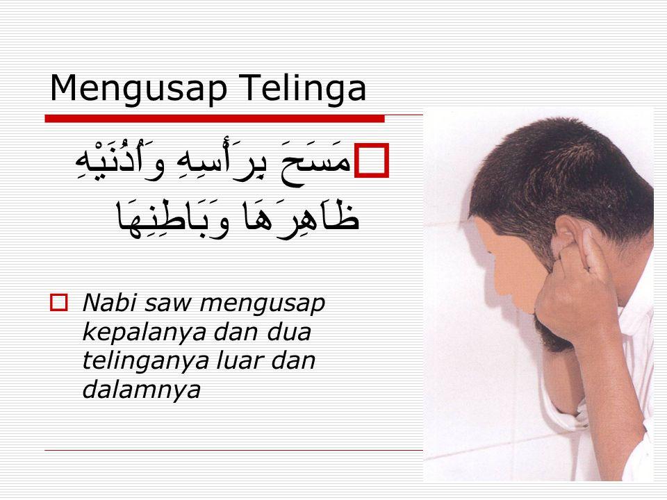 Mengusap Telinga  مَسَحَ بِرَأْسِهِ وَاُذُنَيْهِ ظاَهِرَهَا وَبَاطِنِهَا  Nabi saw mengusap kepalanya dan dua telinganya luar dan dalamnya