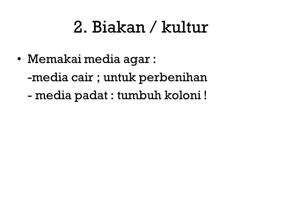 2. Biakan / kultur Memakai media agar : -media cair ; untuk perbenihan - media padat : tumbuh koloni !