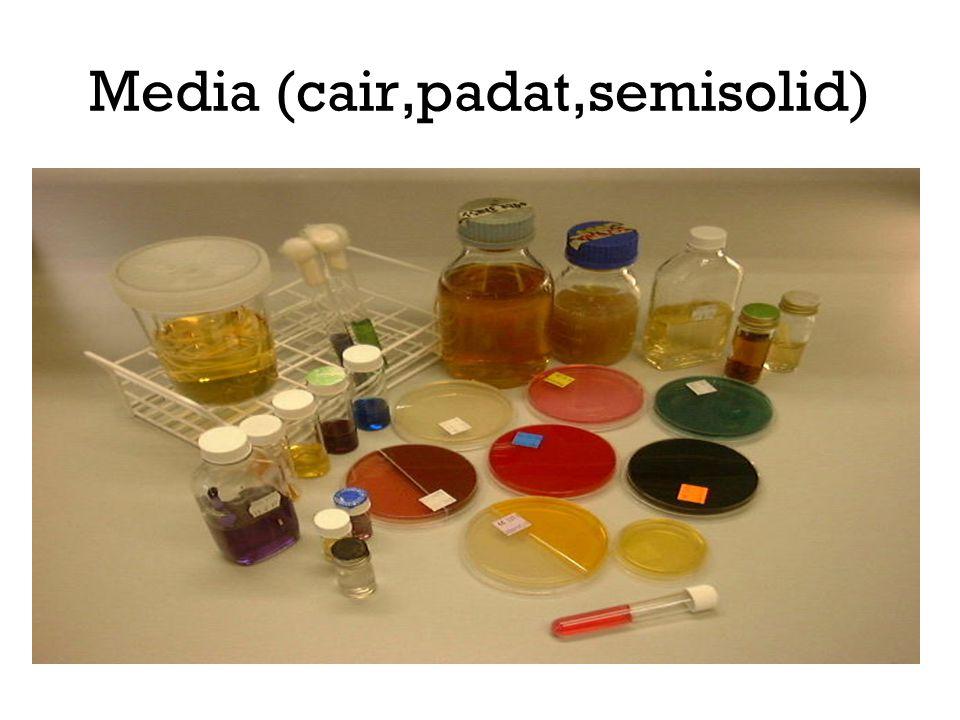 Media (cair,padat,semisolid)