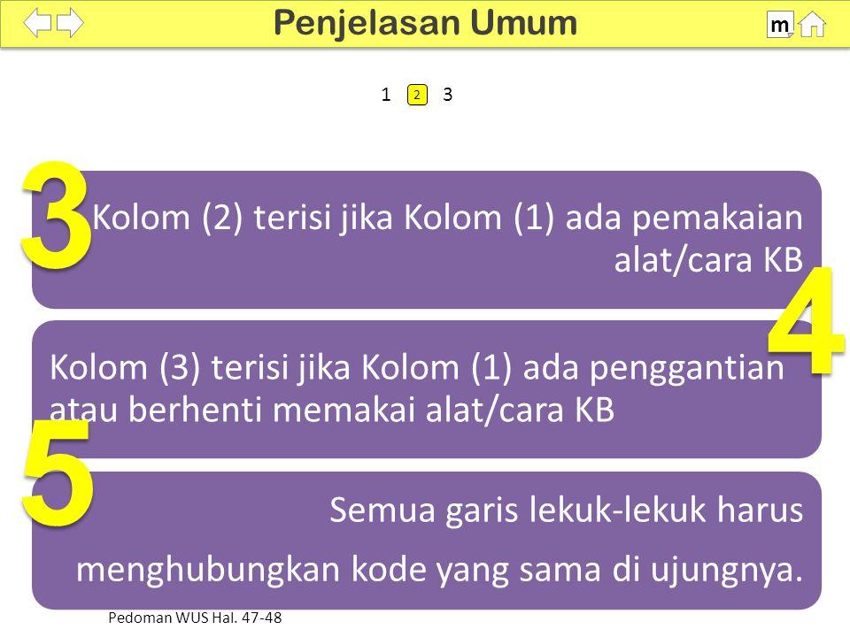 Kolom (2) terisi jika Kolom (1) ada pemakaian alat/cara KB Kolom (3) terisi jika Kolom (1) ada penggantian atau berhenti memakai alat/cara KB Semua garis lekuk-lekuk harus menghubungkan kode yang sama di ujungnya.