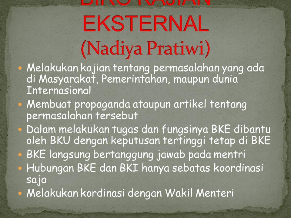 Bertanggung jawab atas tutorial di BEM PAAP Bertanggung jawab atas aksi/demo yang akan dilakukan Membantu BKI dan BKE dalam menjalankan tugasnya Mempu