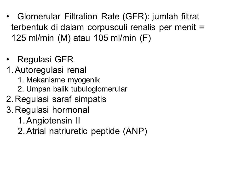 Glomerular Filtration Rate (GFR): jumlah filtrat terbentuk di dalam corpusculi renalis per menit = 125 ml/min (M) atau 105 ml/min (F) Regulasi GFR 1.A