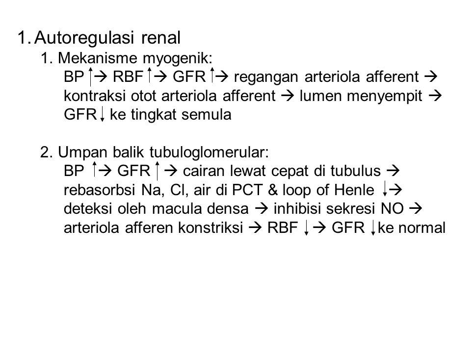 1.Autoregulasi renal 1.Mekanisme myogenik: BP  RBF  GFR  regangan arteriola afferent  kontraksi otot arteriola afferent  lumen menyempit  GFR ke