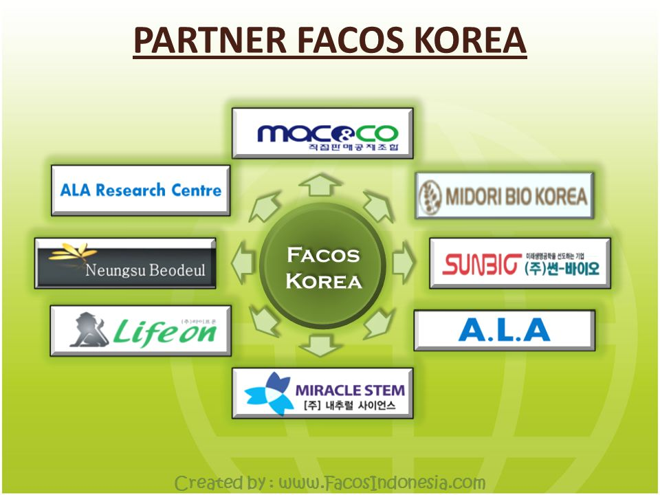 PARTNER FACOS KOREA Created by :