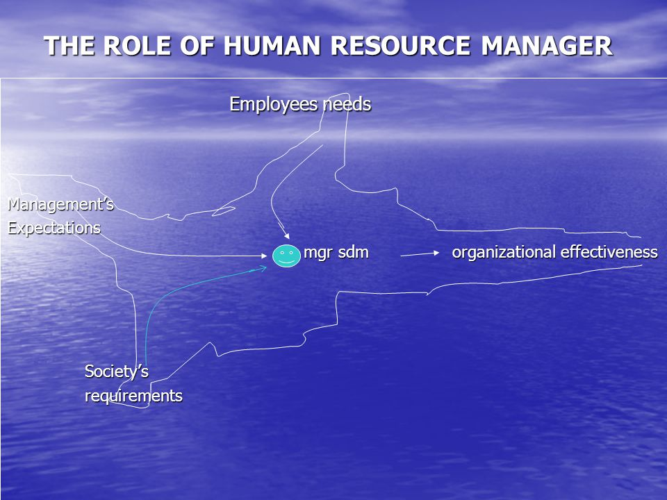 THE ROLE OF HUMAN RESOURCE MANAGER Employees needs Employees needsManagement'sExpectations mgr sdm organizational effectiveness mgr sdm organizational effectiveness Society's Society's requirements requirements