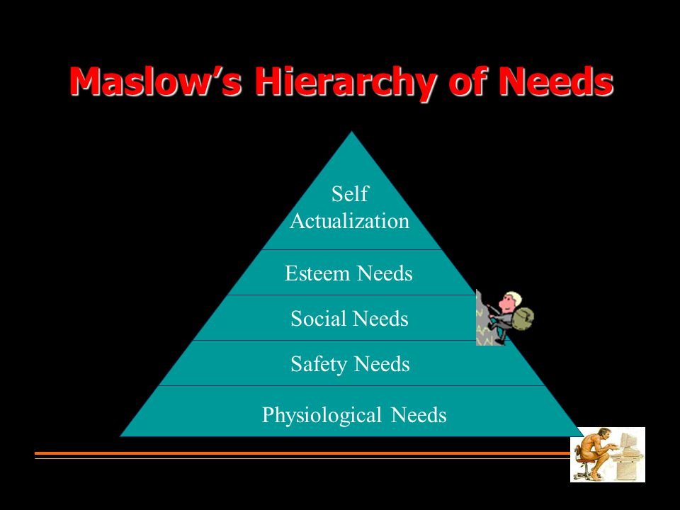 Maslow's Hierarchy of Needs Physiological Needs Safety Needs Social Needs Esteem Needs Self Actualization